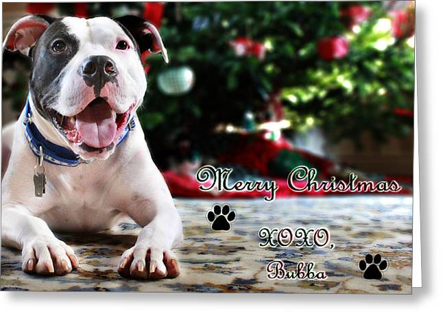 Bubba's First Christmas Greeting Card by Shelley Neff