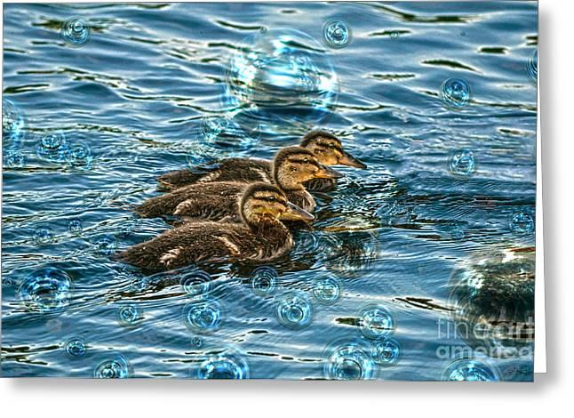 Baby Mallards Digital Art Greeting Cards - Bubble Bath Greeting Card by Skye Ryan-Evans