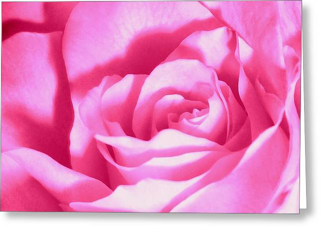 Think In Greeting Cards - Bubble Gum Pink Rose Greeting Card by Janine Riley