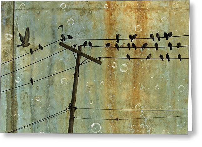 Neutral Background Greeting Cards - Bubbly Birds Greeting Card by Gothicolors Donna Snyder