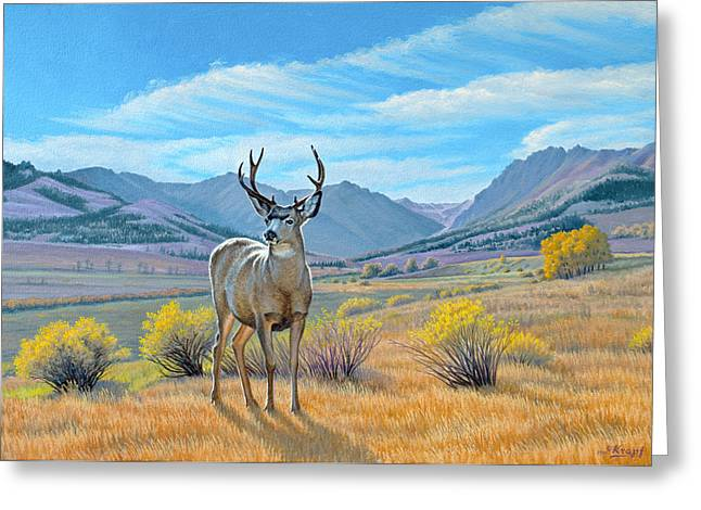 Mules Greeting Cards - Buck Deer-Tom Miner Basin Greeting Card by Paul Krapf