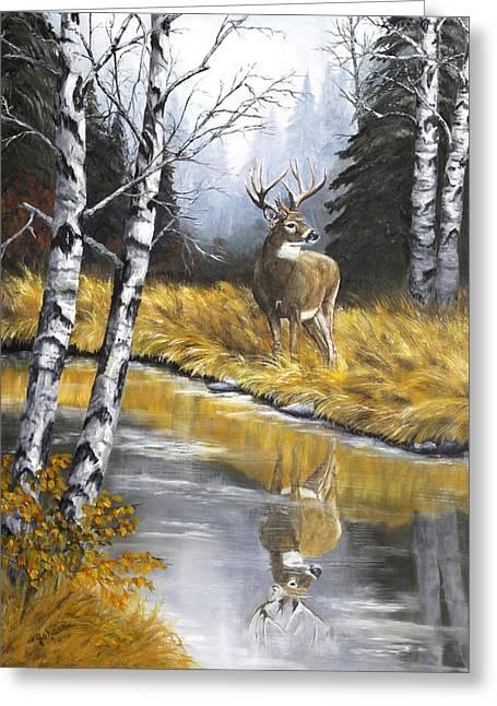 Buck Reflection Greeting Card by Johanna Lerwick Wildlife Nature Artist