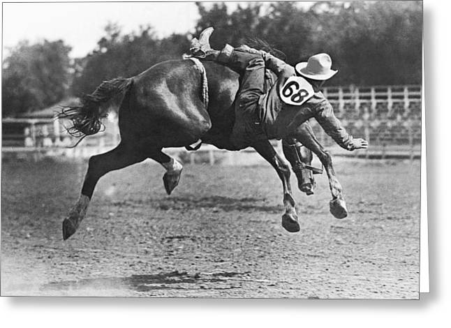 Bucked Off On Bronco Ride Greeting Card by Underwood Archives