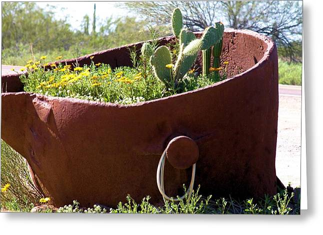 Buket Greeting Cards - Bucket Of Plants Greeting Card by G Berry