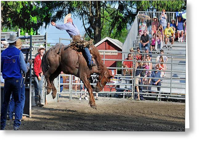 Rodeo Greeting Cards - Bucking Bronco Haven  Greeting Card by Gary Keesler