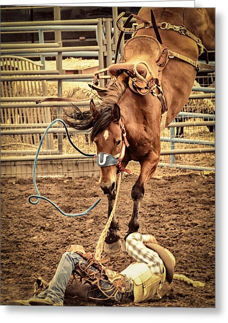 Bucking Greeting Card by Caitlyn  Grasso