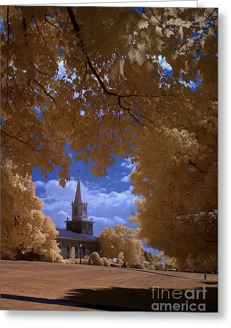 Lewisburg Greeting Cards - Bucknell 2 Greeting Card by Mike Kurec