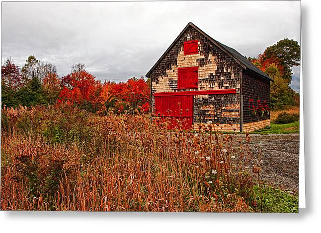 Old Maine Barns Greeting Cards - Buckport Barn Greeting Card by Marcia Colelli