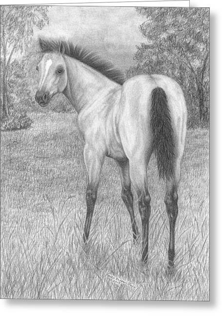 Quarter Horses Drawings Greeting Cards - Buckskin Quarter Horse Filly Greeting Card by Rulan Capper-Starr