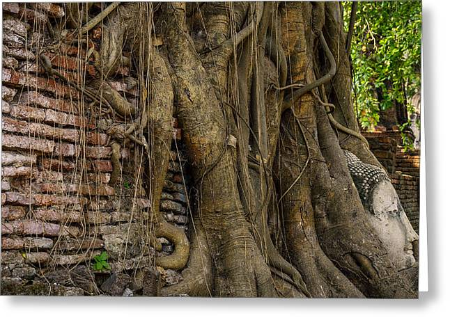 Ayuthaya Greeting Cards - Buddha Head Encased in Tree Roots Greeting Card by Paul W Sharpe Aka Wizard of Wonders