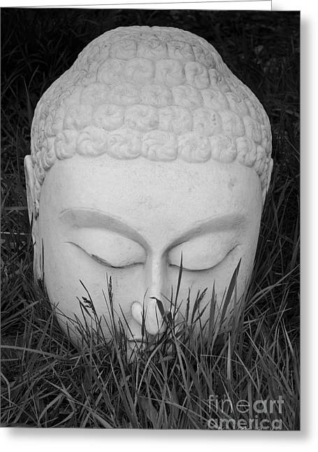 Concentration Digital Greeting Cards - Buddha I Greeting Card by David Gordon
