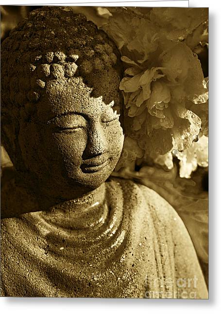 Catherine Greeting Cards - Buddhas Kiss Greeting Card by Catherine Fenner