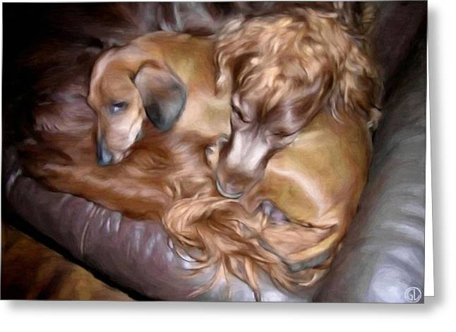 Dog On Couch Greeting Cards - Buddies Greeting Card by Gun Legler