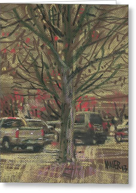 Mall Greeting Cards - Budding Trees Greeting Card by Donald Maier