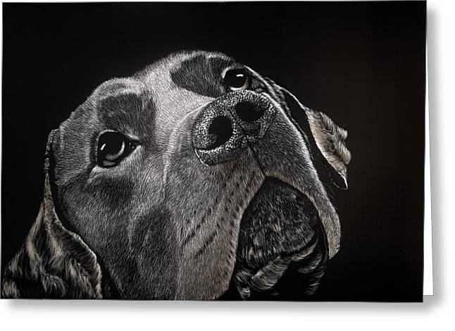 Chocolate Lab Mixed Media Greeting Cards - Buddy Greeting Card by Kathleen McCarthy