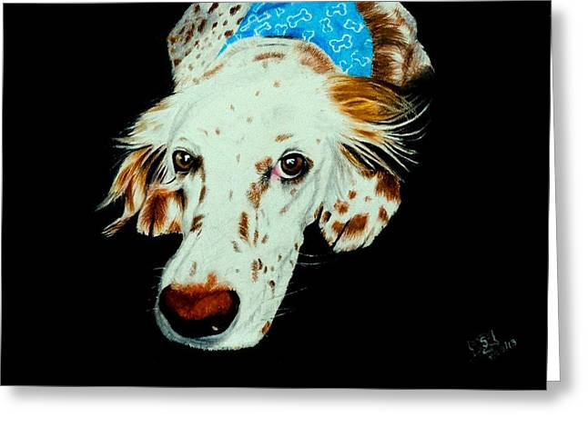 Spaniel Pastels Greeting Cards - Buddy Greeting Card by Sonalin Pereira