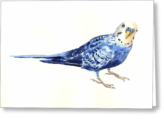 Watercolor! Art Greeting Cards - Budgie Bow Greeting Card by Alison Fennell