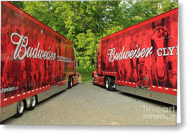 Anheuser-busch Greeting Cards - Budweiser Clydesdale Trucks Greeting Card by Jt PhotoDesign