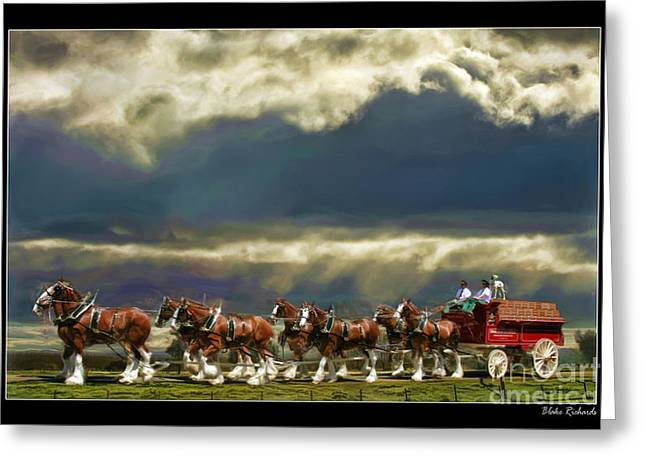 Horse Websites Greeting Cards - Budweiser Clydesdales Paint 1 Greeting Card by Blake Richards