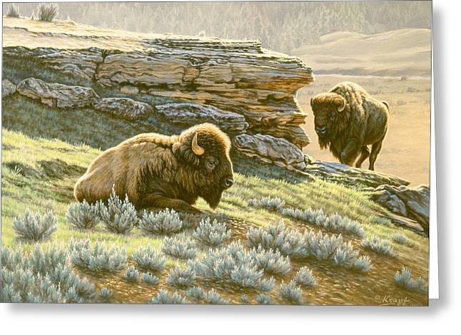 Buffalo Paintings Greeting Cards - Buffalo at Soda Butte Greeting Card by Paul Krapf