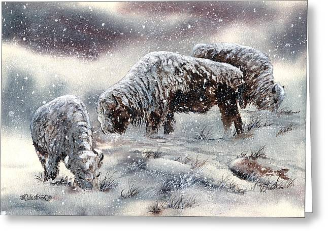 Snowstorm Prints Greeting Cards - Buffalo in Snow Greeting Card by Jill Westbrook