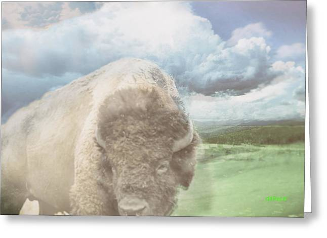 Fed Digital Greeting Cards - Bison Prints Greeting Card by KJ DePace