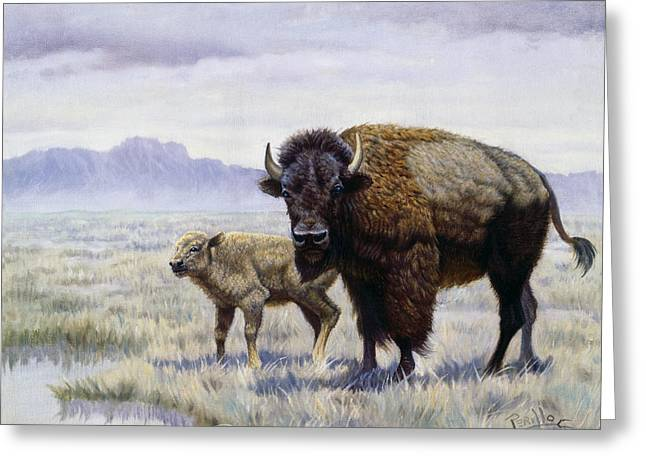 Montana Digital Art Greeting Cards - Buffalo Watering Hole Greeting Card by Gregory Perillo