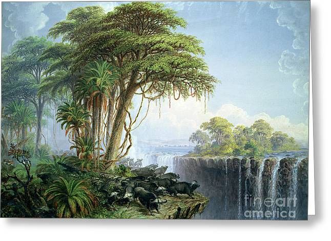 Tall Trees Greeting Cards - Buffalos Driven to the Edge of the Chasm opposite Garden Island Victoria Falls Greeting Card by Thomas Baines