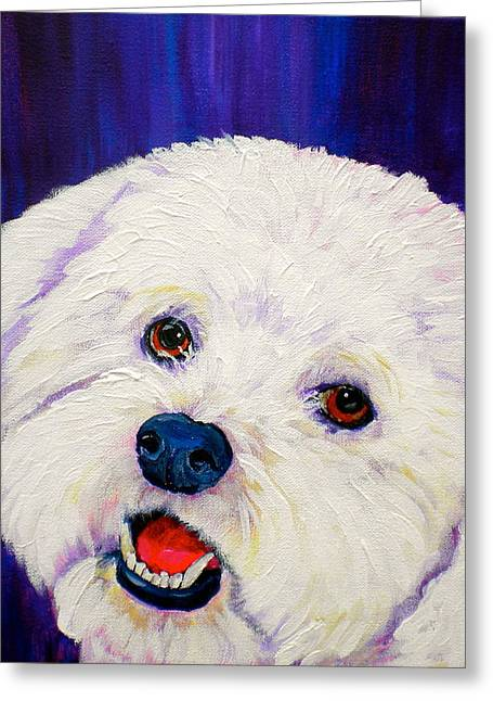 Toy Breeds Greeting Cards - Buffy Greeting Card by Debi Starr