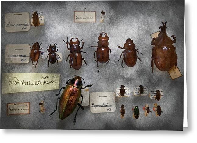 Iridescence Greeting Cards - Bug Collector - The insect Collection  Greeting Card by Mike Savad
