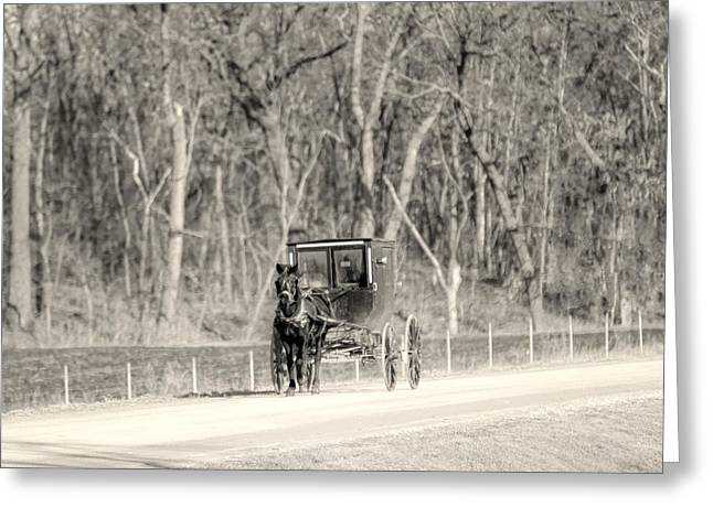 Amish Greeting Cards - Buggie Greeting Card by Thomas Danilovich