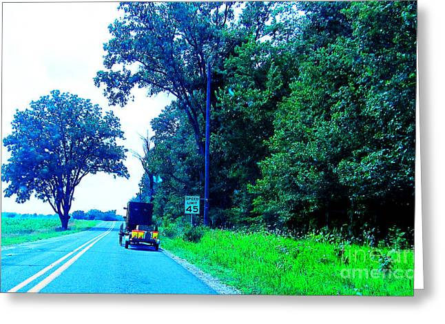Horse And Buggy Greeting Cards - Buggy with a Cab Greeting Card by Tina M Wenger