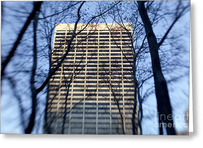 City Buildings Greeting Cards - Building through trees Greeting Card by Tony Cordoza