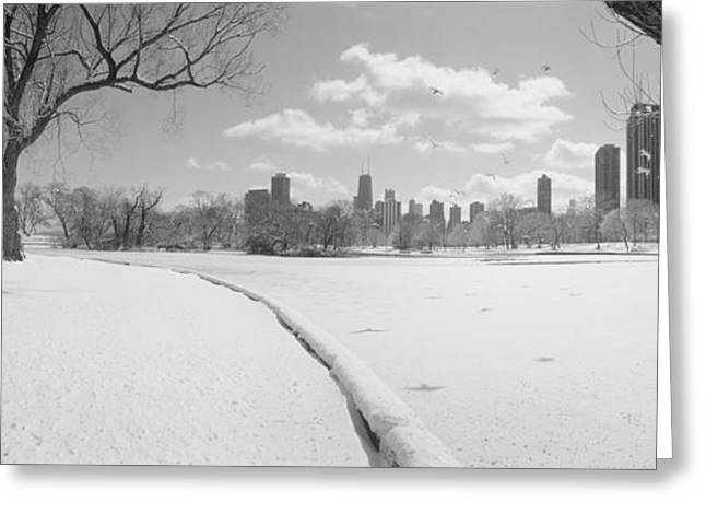 Bare Trees Greeting Cards - Buildings In A City, Lincoln Park Greeting Card by Panoramic Images