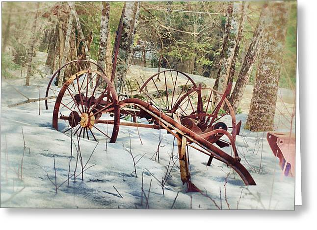 Maine Farms Greeting Cards - Built To Last Greeting Card by Susan Capuano