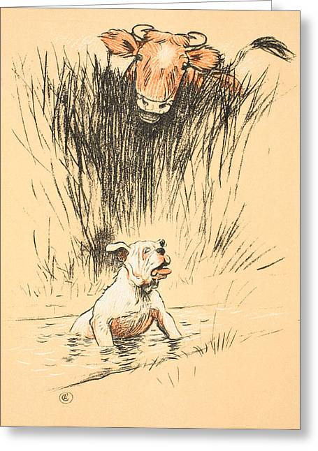 Soaked Greeting Cards - Bull and dog in field Greeting Card by Cecil Charles Windsor Aldin