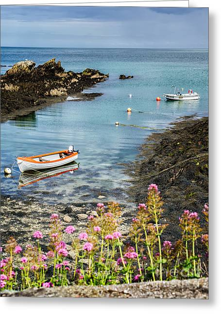 Coastline Flowers Greeting Cards - Bull Bay Boats Greeting Card by Adrian Evans