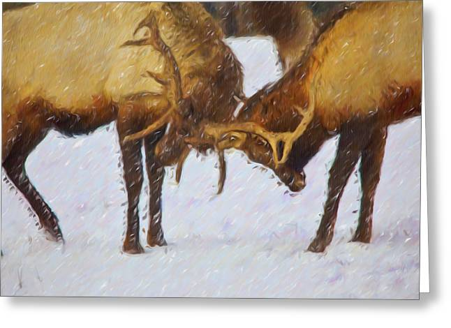 Eureka Paintings Greeting Cards - Bull Elk fighting Greeting Card by Lanjee Chee