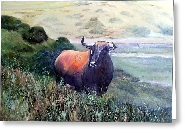 Extremadura Greeting Cards - Bull in the Extremadura Greeting Card by Tomas Castano