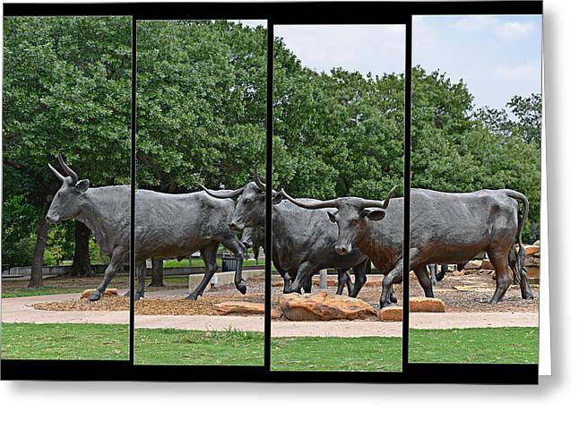 Steer Greeting Cards - Bull Market Quadriptych Greeting Card by Christine Till