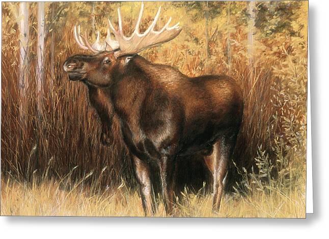Bulls Pastels Greeting Cards - Bull Moose Greeting Card by Karen Cade