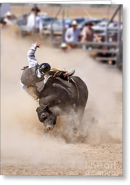 Bull Riding Greeting Cards - Bull riding Greeting Card by Delphimages Photo Creations