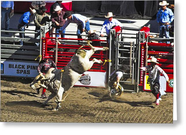 Ron Roberts Photography Greeting Cards Greeting Cards - Bull Riding Greeting Card by Ron Roberts