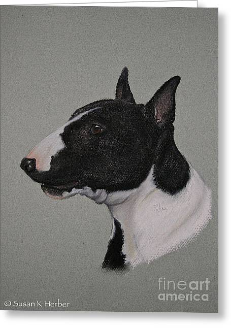 Breed Study Pastels Greeting Cards - Bull Terrier Greeting Card by Susan Herber