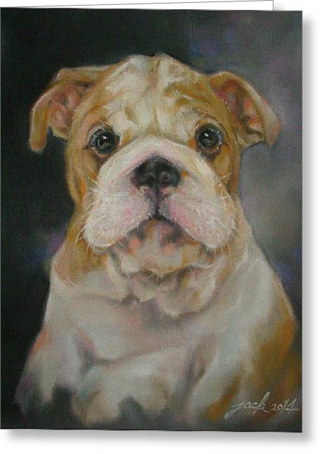 30 X 24 Greeting Cards - Bulldog puppy Greeting Card by Jack No War