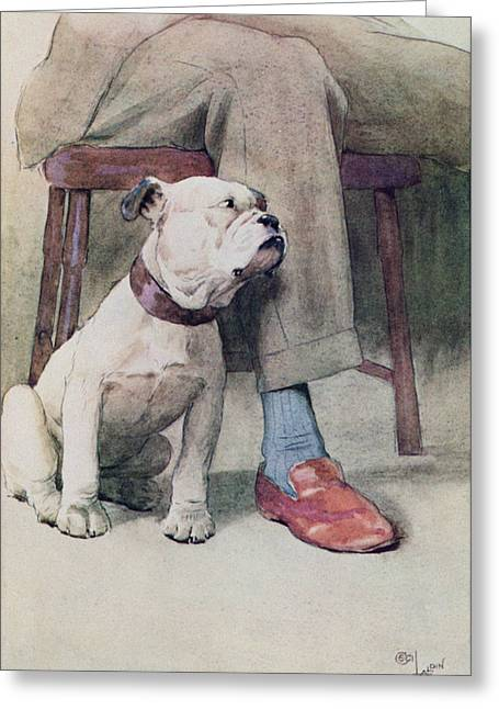 Loyal Greeting Cards - Bulldog Pen & Ink & Wash On Paper Greeting Card by Cecil Charles Windsor Aldin