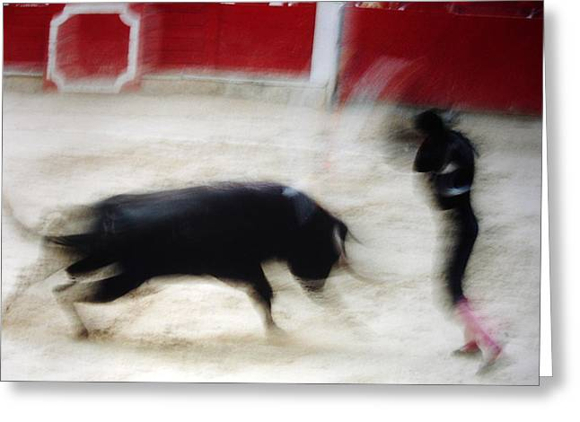 The Horse Greeting Cards - Bullfight  1 Greeting Card by Daniel Gomez