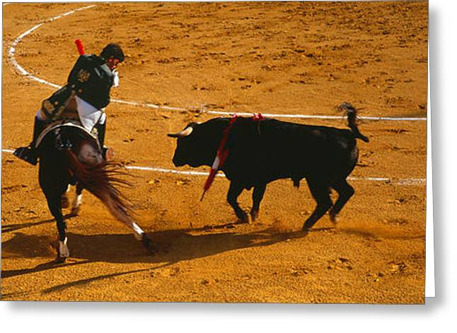 Bullfight Greeting Cards - Bullfighter Taunting Bull In Ring Greeting Card by Panoramic Images