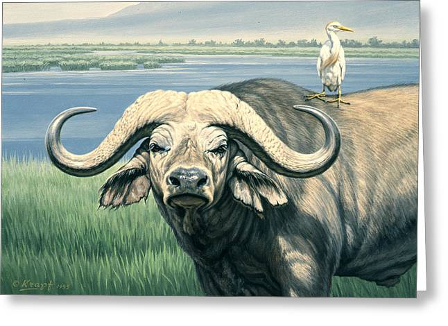 Kenya Greeting Cards - Bullrider   Greeting Card by Paul Krapf