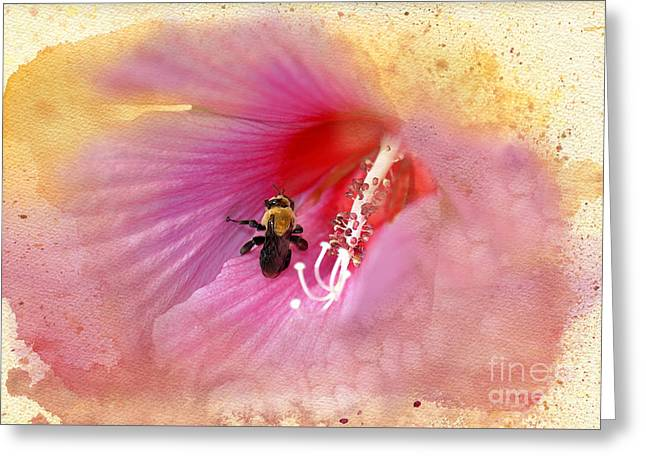 Pink Althea Greeting Cards - Bumble Bee Bliss Greeting Card by Betty LaRue